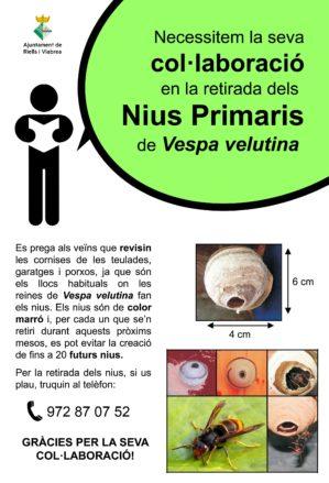 Poster informatiu vespa velutina