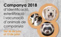 Campanya d'identificació i vacunació d'animals de companyia