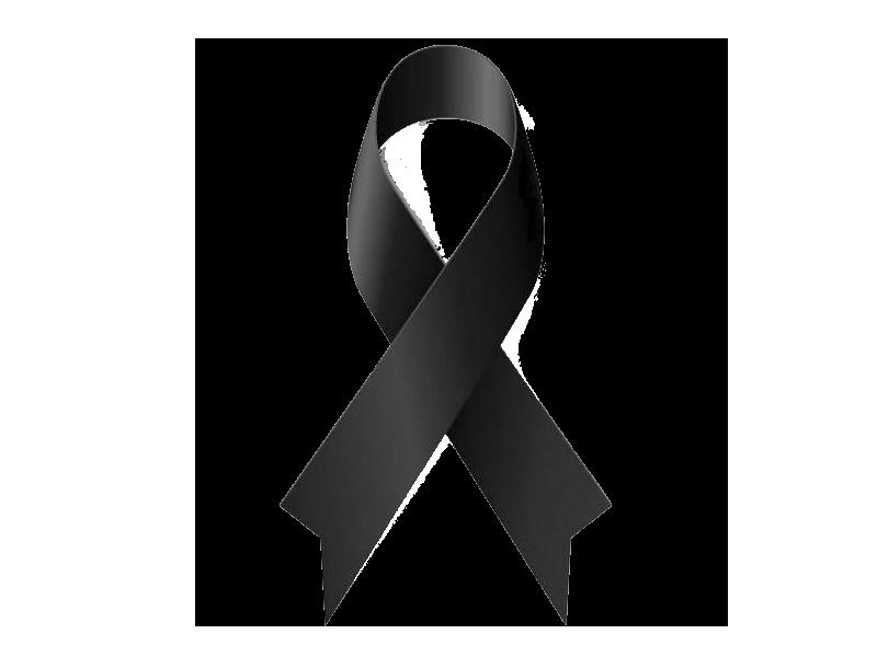 llaç-negre - Web Oficial de l'Ajuntament de Riells i Viabrea